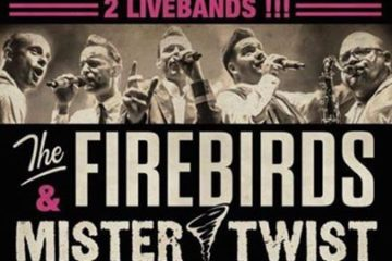 Wettaburg: The Firebirds & Mr. Twist