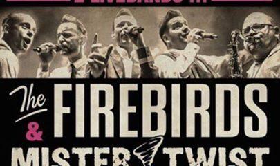 Wettaburg: The Firebirds & Mr. Twist